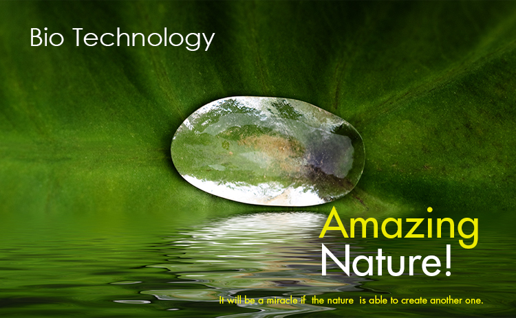 Bio Technology, Amazing Nature, It will be a miracle if the nature is able to create anither one.